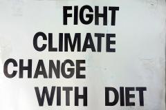 ClimateStrike_Poster021